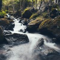 Sei wie das Wasser: Weibliche Führungskraft