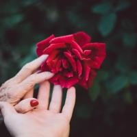 Verletzungen in der Mutter-Tochter-Beziehung