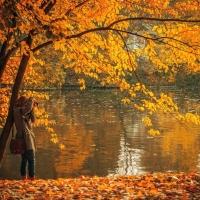 Der Herbst- die Zeitqualität der reifen Frau
